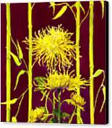 Fuji Mums And Bamboo Canvas Print by Janis Grau
