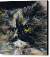 Furry 2 Canvas Print by Valeriy Mavlo