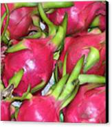 Fushia Fruit Canvas Print by Douglas Barnett