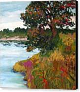Ganges Tree Canvas Print
