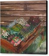 Garden Box Canvas Print