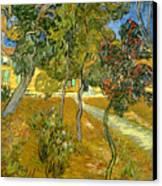 Garden Of Saint Paul's Hospital Canvas Print by Vincent van Gogh