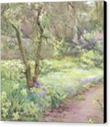 Garden Path Canvas Print by Mildred Anne Butler