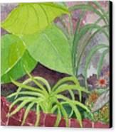 Garden Scene 9-21-10 Canvas Print by Fred Jinkins