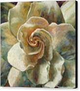 Gardenia Canvas Print by Billie Colson