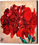 Geranium Bloom Canvas Print