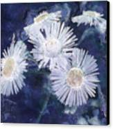 Ghost Flowers Canvas Print