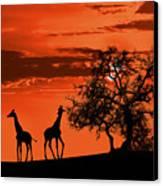 Giraffes At Sunset Canvas Print