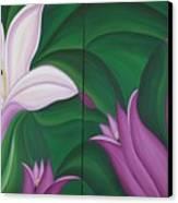 Gladiolus Carneus Canvas Print