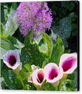 Globe Thistle And Calla Lilies Canvas Print by Corey Ford