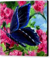 Glory Aceo Canvas Print