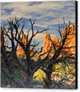 Glove Rock Canvas Print