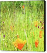 Glowing Summer Canvas Print by Terrie Taylor
