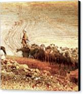 Goatherd Canvas Print