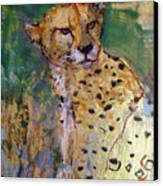 Golden Cheetah Canvas Print