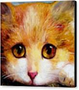 Golden Eye Canvas Print by Shijun Munns