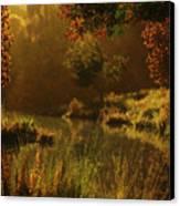 Golden Canvas Print by Melissa Krauss