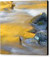 Golden Refuge Canvas Print by Mike  Dawson