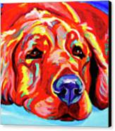 Golden Retriever - Ranger Canvas Print by Alicia VanNoy Call