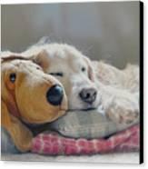 Golden Retriever Dog Sleeping With My Friend Canvas Print by Jennie Marie Schell