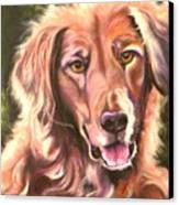 Golden Retriever More Than You Know Canvas Print by Susan A Becker