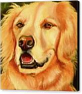 Golden Retriever Sweet As Sugar Canvas Print by Susan A Becker