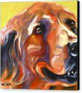 Golden Retriever The Shadow Of Your Smile Canvas Print by Susan A Becker