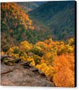 Golden Valleys Canvas Print by Ryan Heffron