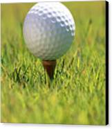 Golf Ball On Tee Canvas Print by Carl Shaneff - Printscapes