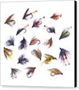 Gone Fishing Canvas Print by Meirion Matthias