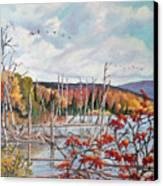 Gone South  Canvas Print