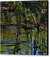 Grand Beach Marsh Canvas Print
