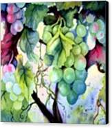 Grapes II Canvas Print