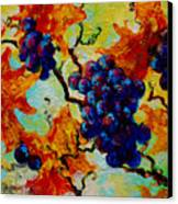 Grapes Mini Canvas Print