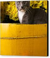 Gray Kitten In Yellow Bucket Canvas Print by Garry Gay