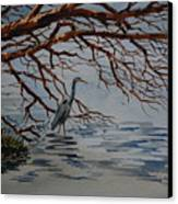 Great Blue Heron Canvas Print by Bill Dinkins