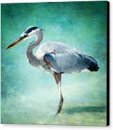 Great Blue Heron Canvas Print by Ellen Heaverlo