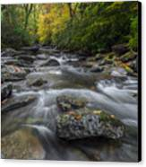 Great Smoky Mountains. Canvas Print by Itai Minovitz
