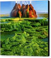Green Fly Geyser Canvas Print by Inge Johnsson