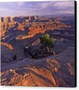 Green River Canyon Sunset Canvas Print