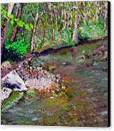 Gressy Creek Canvas Print