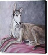 Greyhound At Rest Canvas Print by George Pedro