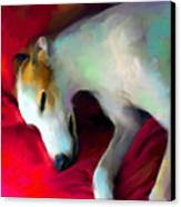 Greyhound Dog Portrait  Canvas Print