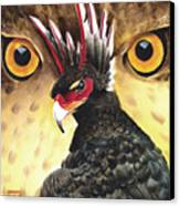 Griffin Sight Canvas Print