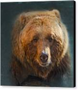 Grizzly Bear Portrait Canvas Print by Betty LaRue