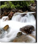 Grizzly Creek Canvas Print by Barry C Donovan