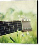 Guitar In Country Meadow Canvas Print