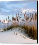 Gulf Dunes Canvas Print by Eric Foltz