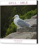 Gull Able Canvas Print
