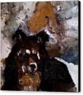 Gypsy Dog Canvas Print